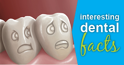 4 Interesting Dental Facts From Your Austin Dentist - 12
